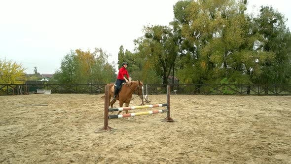 Young Female Rider on Bay Horse Jumping Over Hurdle