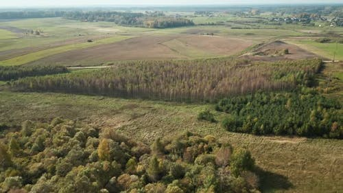 AERIAL: Autumn Season with Forest and Plains in Background