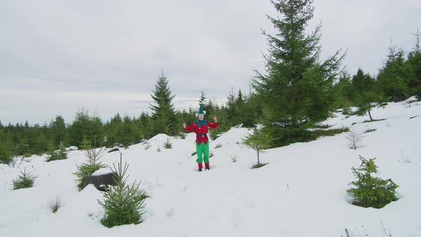 Thumbnail for Elf jumping in the woods