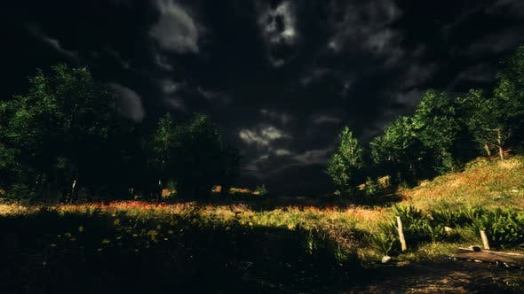 Thumbnail for Thunderstorm Clouds with Lightning in Green Meadow
