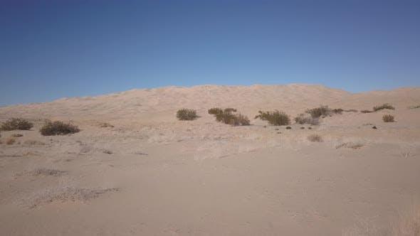 Thumbnail for Desert Tecopa in Bureau of Land Management California