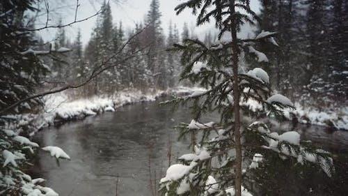 Côte de la rivière couverte de neige