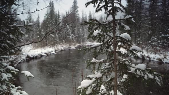 Thumbnail for River Coast Covered with Snow