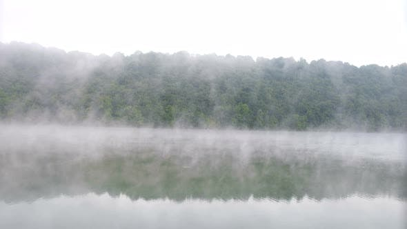 Fog over the forest with the river. Beautiful morning landscape.