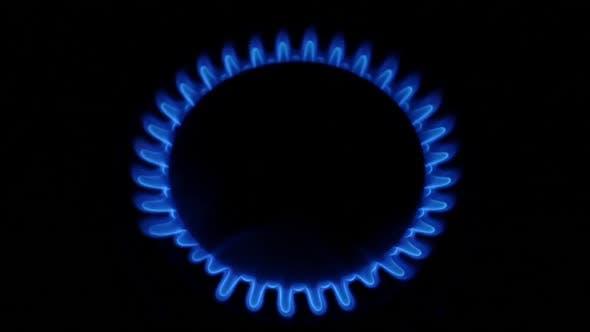 Natural Gas Stove Burner Blue Flame. Close Up