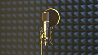 Professional Microphone in Sound Recording Studio