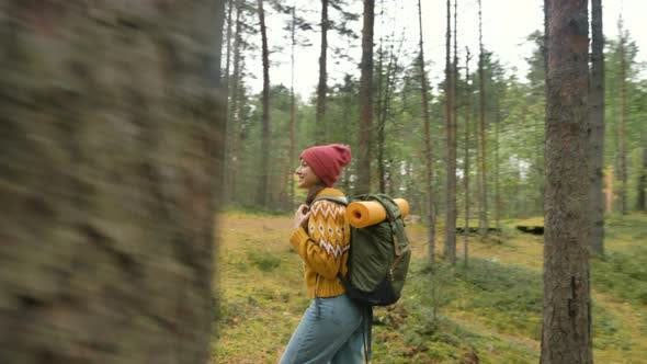 Thumbnail for Woman Tourist Walks Looking Around Along Old Pine Forest