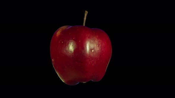 Thumbnail for Rotating Isolated Red Apple