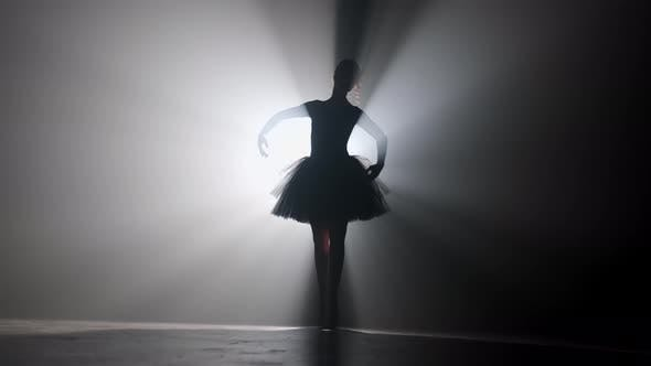 Thumbnail for Professional ballerina dancing ballet in spotlights smoke on big stage