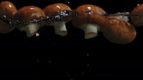 Fresh Mushrooms Fall Into the Water.