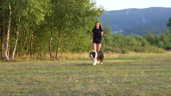 Thumbnail for A Young Woman and Her Border Collie Walk Across a Meadow in a Forest