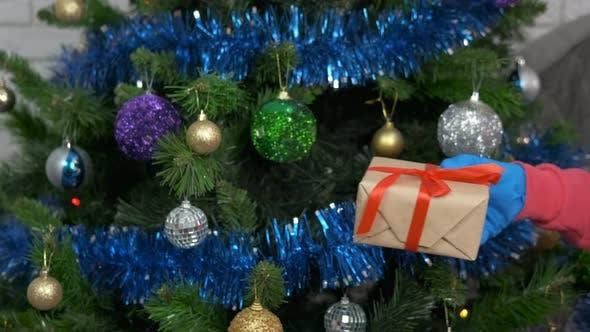 Christmas Present in Quarantine