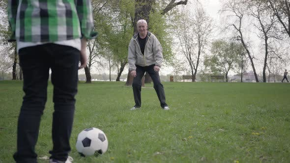 Thumbnail for Little Boy Playing Football or Soccer with His Father or Grandfather in the Park
