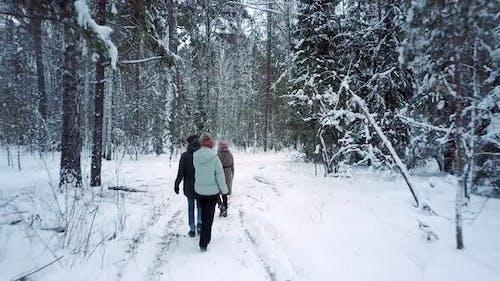 Menschen gehen auf ausgetretenen Pfaden im Park im verschneiten Winter
