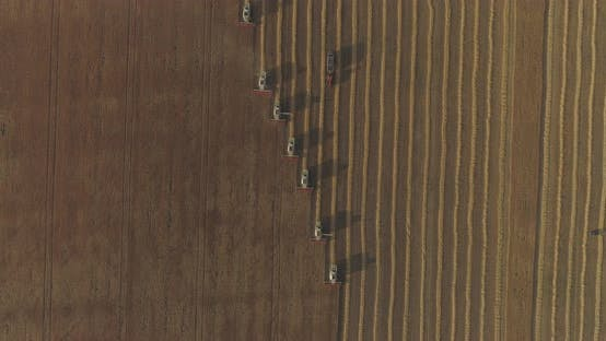 Thumbnail for Aerial view of combines harvesting
