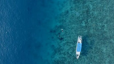 Two People Snorkelling in Clear Waters with Corals
