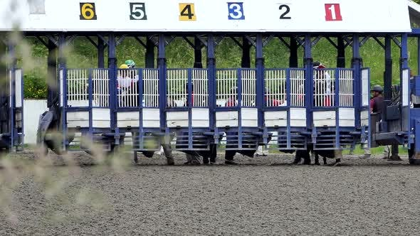 Thumbnail for Horse Race Jockeys at Gates