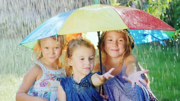 Thumbnail for Three Sisters Are Hiding Under the Umbrella of Color