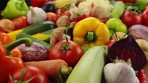 Thumbnail for Plenty of Ripe Vegetables