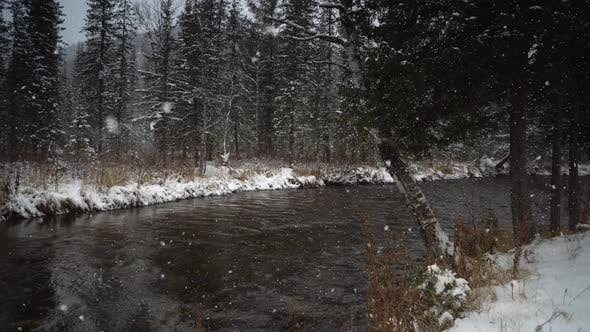 Forest River Coast Covered with Fall White Snow