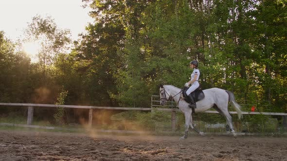 Thumbnail for Side View, Professional Equitation in Nature