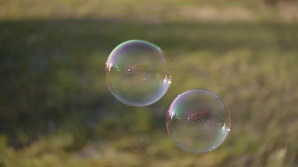 Bubbles Floating In Sunlit Field
