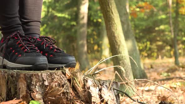Thumbnail for A Woman Stands on a Stump in a Forest and Looks Around - Closeup on the Shoes