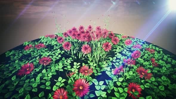 Thumbnail for Garden Flowerbed 4k