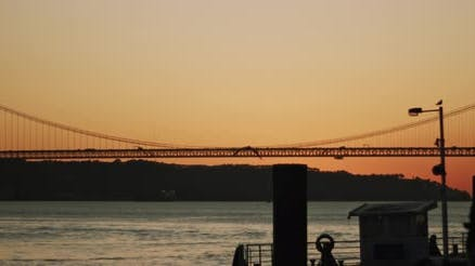 Silhouette of a city harbor and a bridge at night with seagulls flying in the background