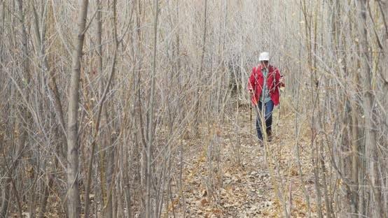 Aktive ältere Frau Wandern in trockenem Klima Umgebung in Zion Utah