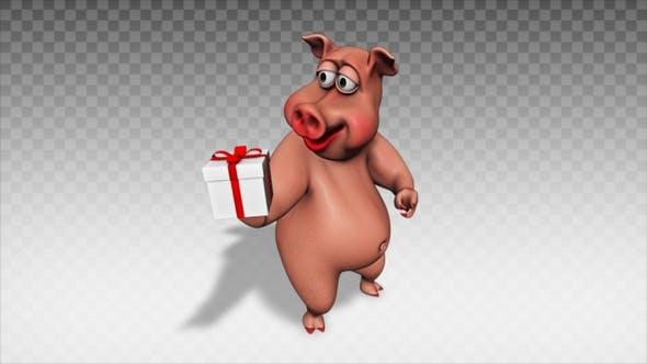 Cartoon Pig - Show Present