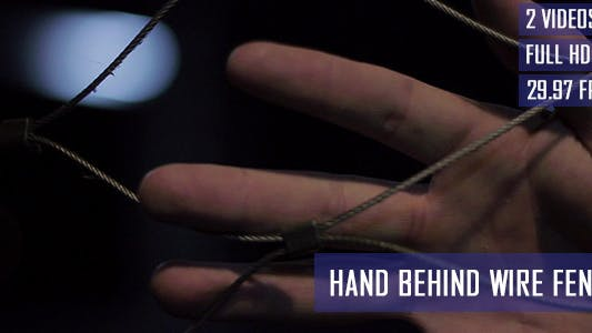 Thumbnail for Hand Touching The Wire Fence
