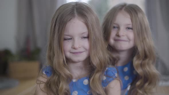 Cover Image for Close-up of Little Cute Brunette Caucasian Girl with Grey Eyes Looking at Camera As Her Twin Sister