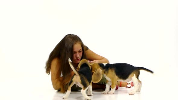 Thumbnail for Girl Played with Cute Beagle Puppy on Studio. Slow Motion