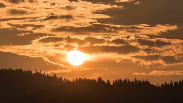 Thumbnail for Sunset Over Forest