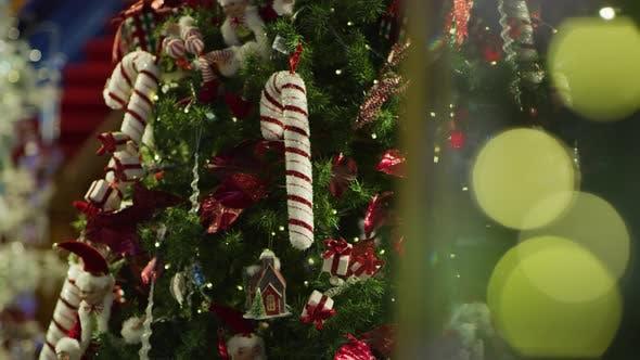 Thumbnail for Christmas tree and bokeh lights