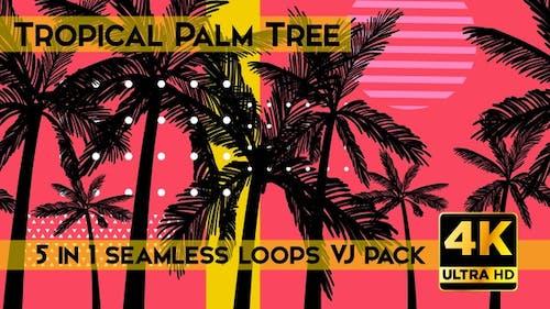 Tropical Palm Tree VJ Loops