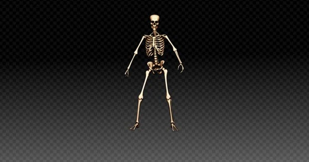 Skeleton Show Dance Upbeat