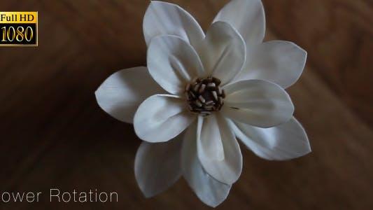 Thumbnail for Flower 2