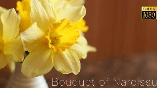 Bouquet Of Narcissus