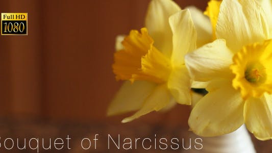 Thumbnail for Strauß Narcissus 2
