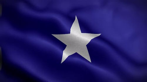 California Lone Star Flag Front