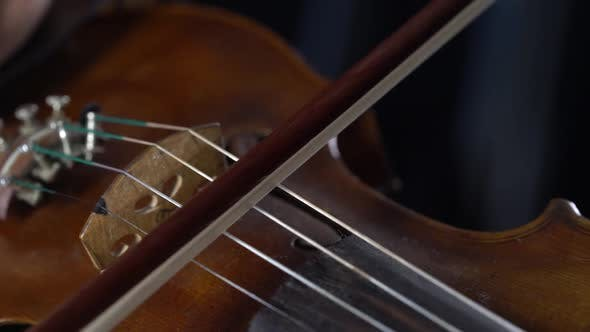 Thumbnail for Playing on a Brown Violin Girl Fingering the Strings