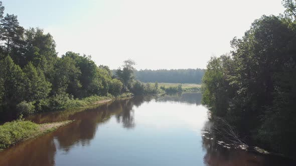 Landscape of Nature - the River Between the Coniferous Forest