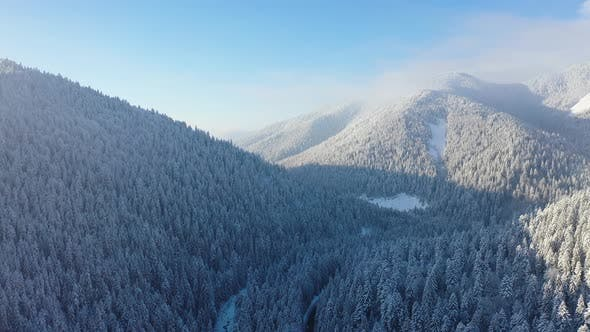 Thumbnail for Aerial view on forest and mountains in the winter time. Natural winter landscape from air.