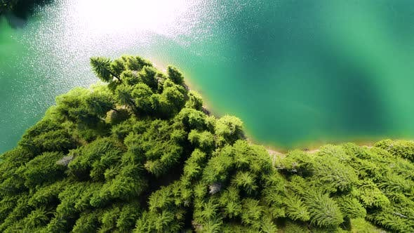 Aerial view of a forest lake. Top view of blue lake and green forests on a sunny summer day.
