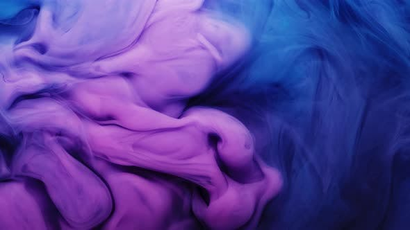 Colorful Puffy Puffs of Smoke on an Isolated Black Background. Modern Colorful Blue Purple Light
