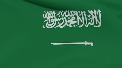 Flag Saudi Arabia Patriotism National Freedom Seamless Loop