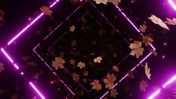 Maple Leaves Fall 01 4K