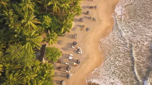 Romantic Sunset on a Tropical Beach with Palm Trees. Sri Lanka, Drone Footage